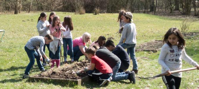 Frühlingserwachen im Bildungshausgarten