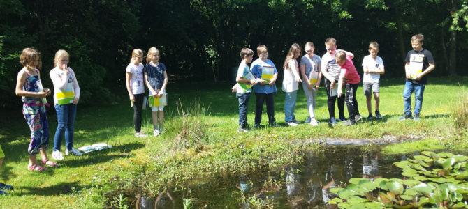 Im grünen Klassenzimmer das Leben am Teich erkundet